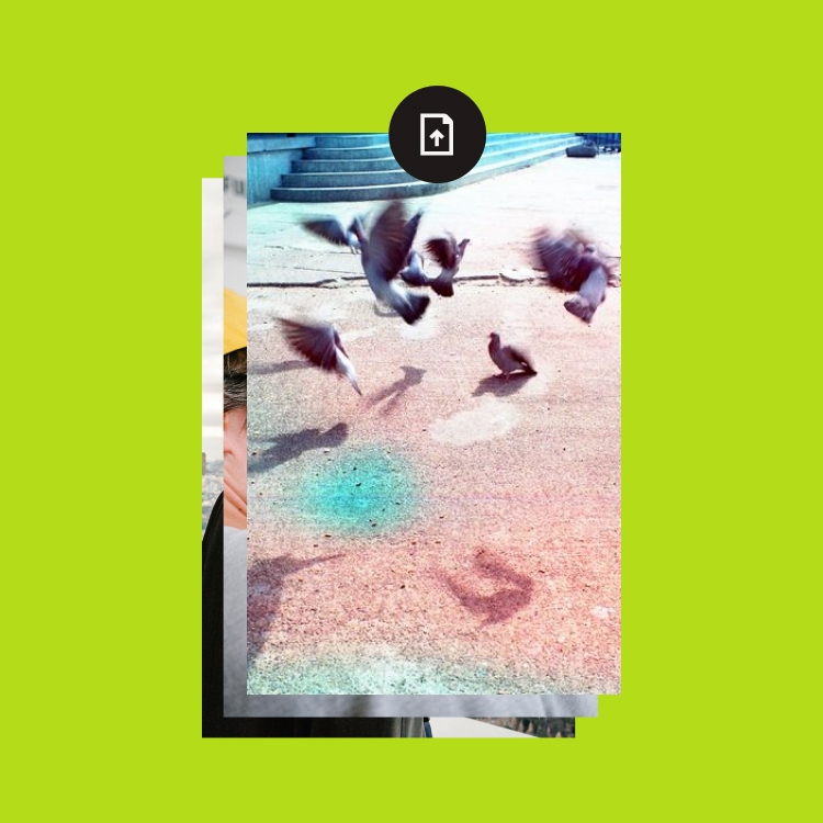 Three photos upload into Dropbox.