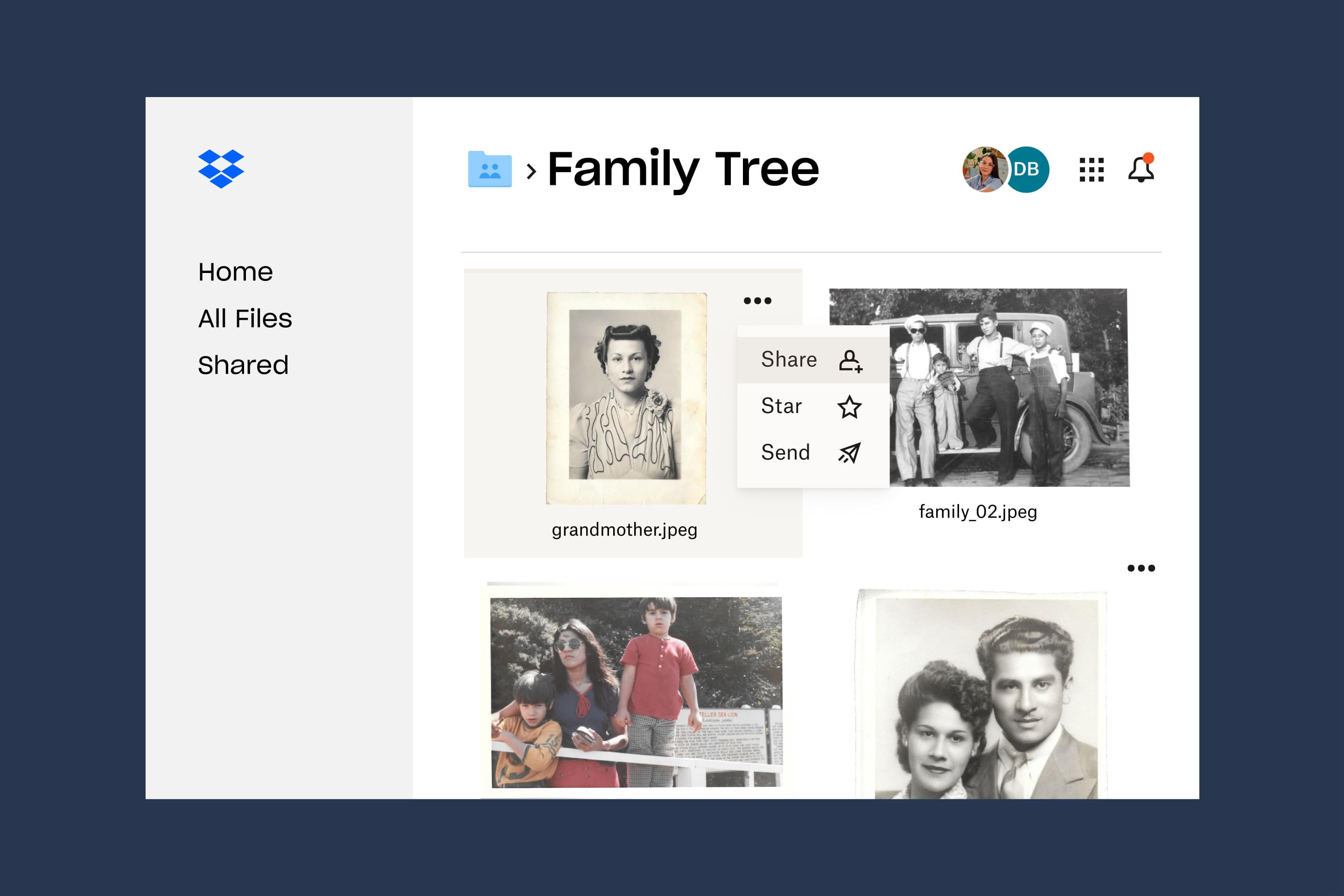 A photo in the Dropbox folder titled Family Tree has the option to be Shared, Starred or Sent.
