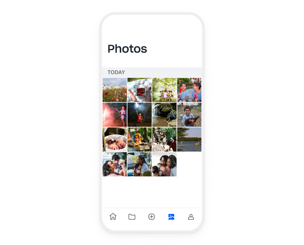 A collection of photos in the photo library of a user's camera