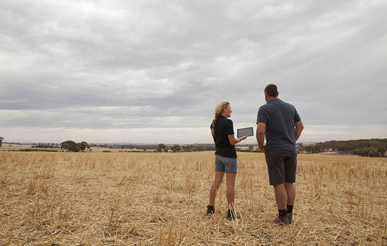 CSBP Fertilisers – Fertigungsunternehmen