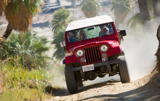 Desert Adventures, syarikat pelancongan