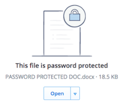 File password protected
